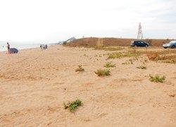 Пляж Песчанка с парковкой Приморский Феодосия