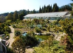 Возле кактусовой оранжереи Никитского ботанического сада