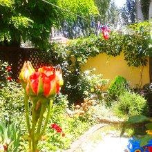 Дом для семейного отдыха в Феодосии
