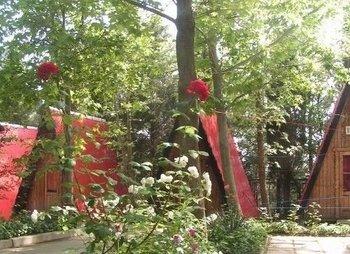 База отдыха Солнечное в Солнечногорском